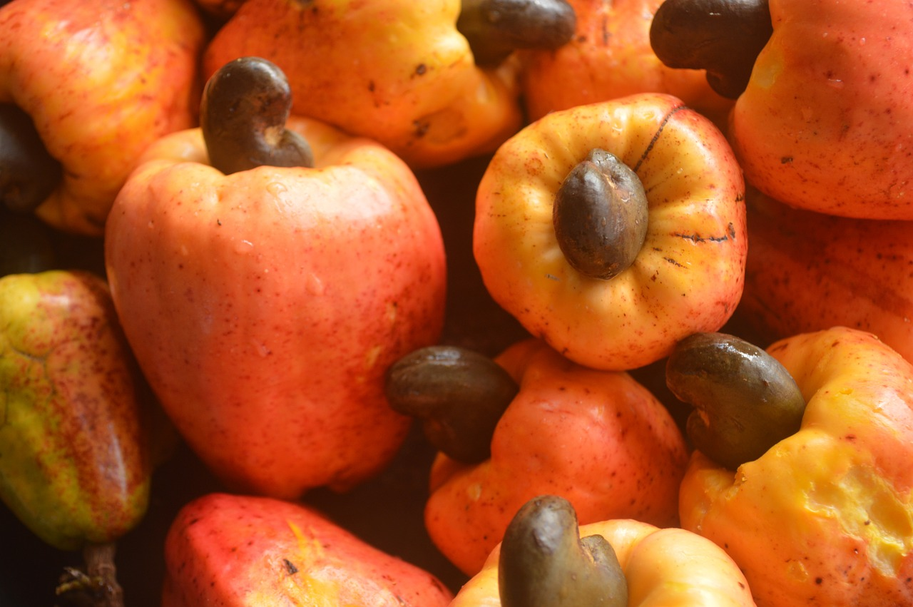 Cashew Juice Recipe and the Health Benefits to your Immune System