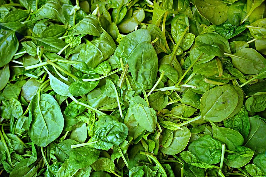 spinach-vegetable